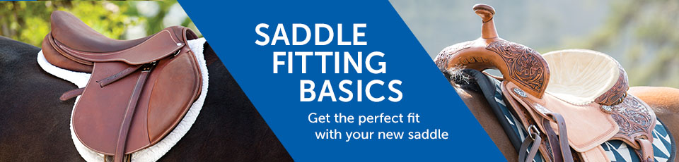 Saddle Fitting Basics