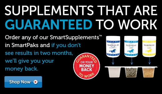 Supplements that are guaranteed to work!