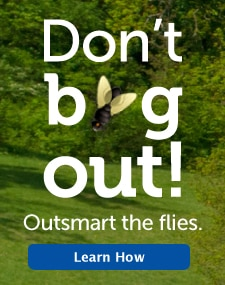 Don't bug out!