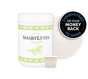 SmartLytes Bucket