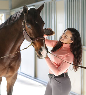 Image of woman grooming a horse