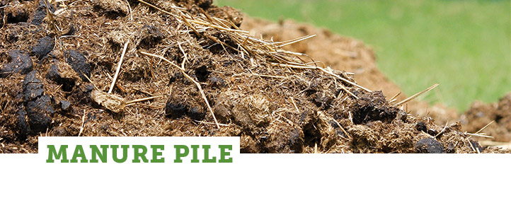 Zone: Manure Pile