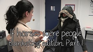 If horses were people - Blanketing Edition, Part 1