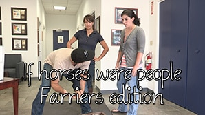 If horses were people - Farriers Edition