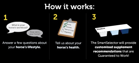 SmartSelector - five minutes to a healthier horse. 1. Answer a few questions about your horse's lifestyle.  2. Tell us about your horse's health.  3. The SmartSelector will provide customized supplement Recommendations for your horse!